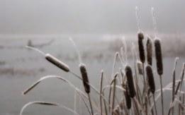 inverno, aforismi, mente, comunicazione taranto
